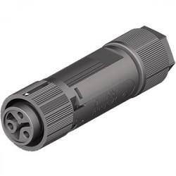 AEconversion Buchsenteil RST16i3 3-polig Steckverbinder