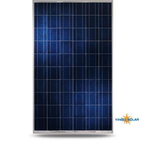 Yingli Solar YL245P-29b Modul 245 poly